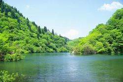 新緑につつまれた淡海湖
