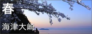 春の高島市観光の画像