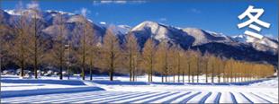 冬の高島おすすめ観光情報見出し画像