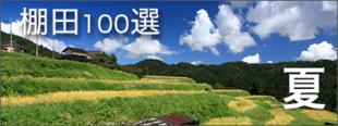 夏の高島おすすめ観光情報の画見出し像