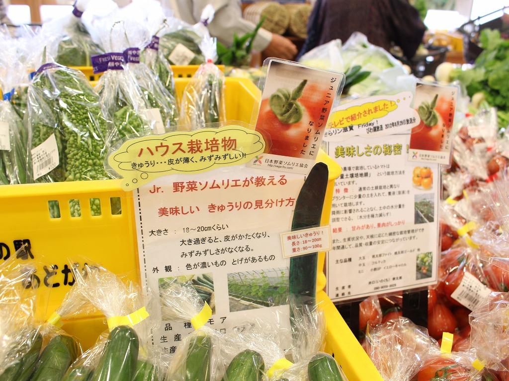 野菜 ポップ